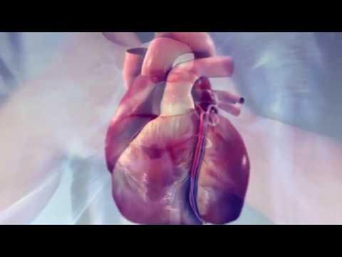 Frymë thellë dhe presionin e gjakut