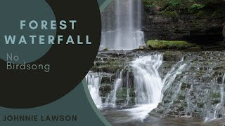 Relaxing Nature Sounds-Soothing Sound of the Forest with a Natural Calming Waterfall-Johnnie Lawson
