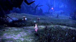 TERA Online Stress test 2010 (Elin race) [HD]