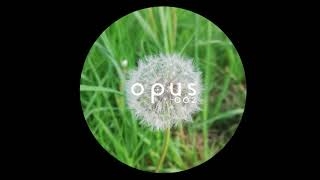 Unknown Artist - Painting On Silence [OPUS002]