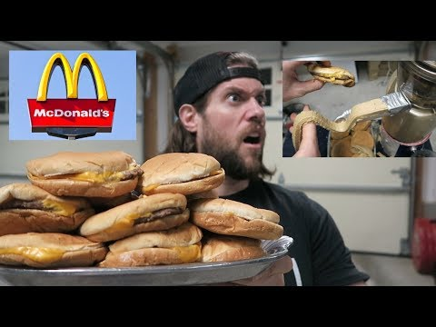 What Happens When You Put 15 McDonald's Cheeseburgers In A Juicing Machine? | L.A. BEAST