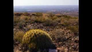Why Move To Las Cruces, New Mexico?