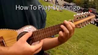 Charango Lesson - How to Play the Charango
