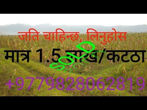 धेरै सस्तो जग्गा/1.5 लाख प्रति कठा जग्गा तुरुन्तै बिक्री/Cheapest land sale/1.5 lakhs per kattha