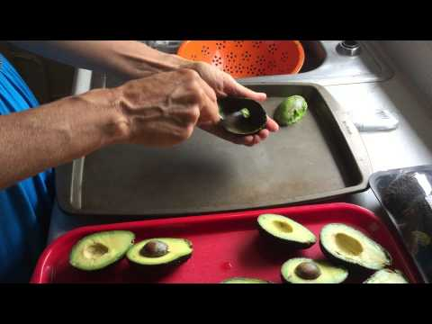 How to Freeze Avocados For Later Consumption