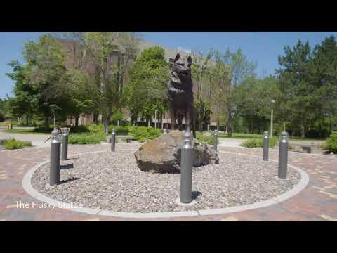 Michigan Technological University - video