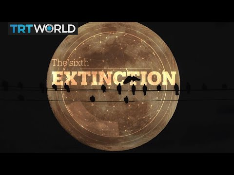 6th Extinction is Here