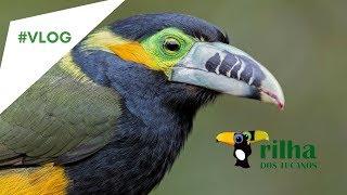 Já viu as fotos maravilhosas que saem da TT-Trilha dos Tucanos? ASSISTA O VÍDEO E ENTENDA O PORQUE!