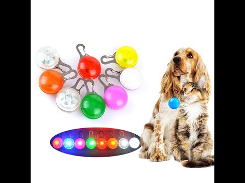 SPECIAL! PAW TEE BUY 1 WIN 2 FREE PET COLLAR