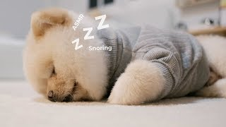 คลิปนี้จะทำให้นอนหลับง่ายขึ้น 💤