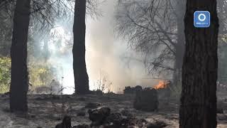 vesuvio-di-nuovo-in-fiamme-rogo-rifiuti-industriali-nel-parco
