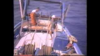 preview picture of video 'Pesca Arrastre Arenys de Mar 1982'