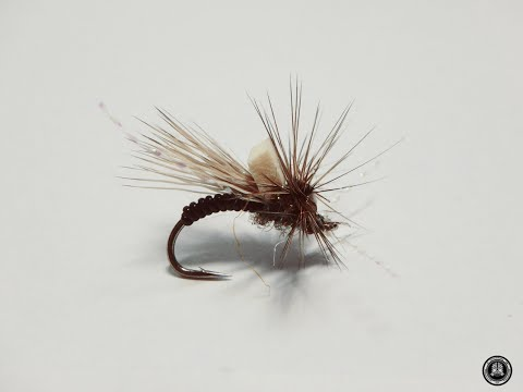 fly tying RYLEE'S CRIME SCENE CADDIS EMERGER por Jorge G