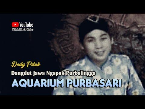 Dedy Pitak ~ AQUARIUM PURBASARI; Lagu Ngapak Purbalingga @dpstudioprod [Official Music Video]