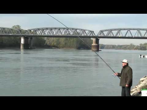 Base che pesca layf