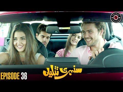 Sunehri Titliyan | Episode 36 | Turkish Drama | Hande Ercel | Best Pakistani Dramas