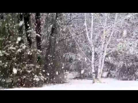 Snowfall (Composed by Robert Nilsson)