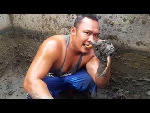 Video PANEN BELUT  SUPER SAIYA