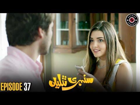 Sunehri Titliyan | Episode 37 | Turkish Drama | Hande Ercel | Best Pakistani Dramas
