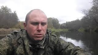 Рыбалка в смоленской области на реке сож