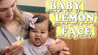 Baby Lemon Face (WK 463) Bratayley