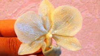 орхидея  холодный фарфор мастер класс