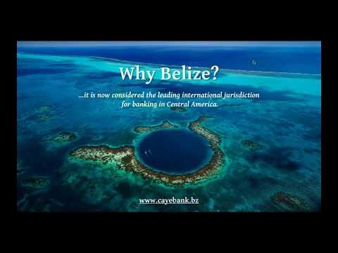 Private offshore banking webinar by Luigi Wewege  - Senior Vice President of Caye International Bank