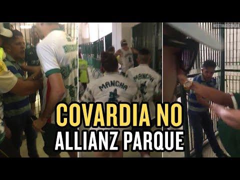 Torcedor é agredido acusado de ser corinthiano no Allianz Parque