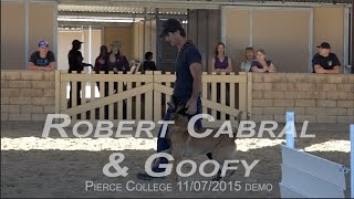 Robert Cabral Dog Training Obedience And Protection Demo With Goofy