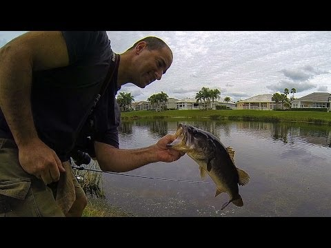 BASS FISHING (Florida Golf Course Pond) January
