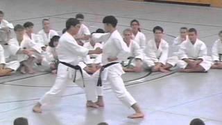 H.Kanazawa sensei - 1994. Ippon-kumite. Karate.