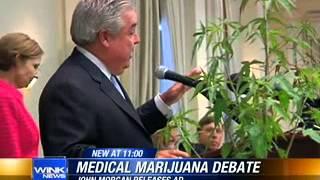 Florida Medical Marijuana News 2013 // John Morgan begins pro-pot radio ad