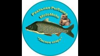 Где поймать берша в реальной рыбалке