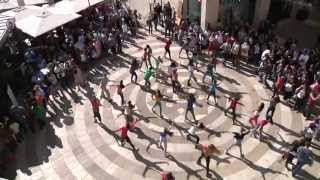 flash mob - hora jerusalem פלאש מוב הורה ירושלים