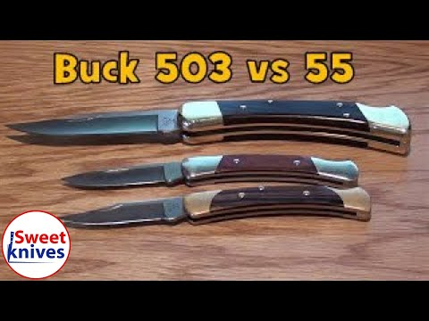 Buck 503 Prince Knife Review – Pocket Knife