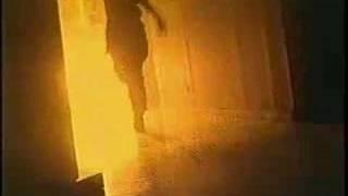 Sprung Monkey | Swirl