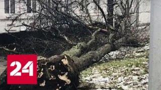 Центральные регионы России во власти мощного циклона - Россия 24