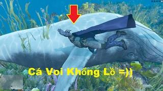 GTA 5 - Đi chơi đảo Phú Quốc, bắt được cá voi Khổng Lồ (Palm Island Mod)