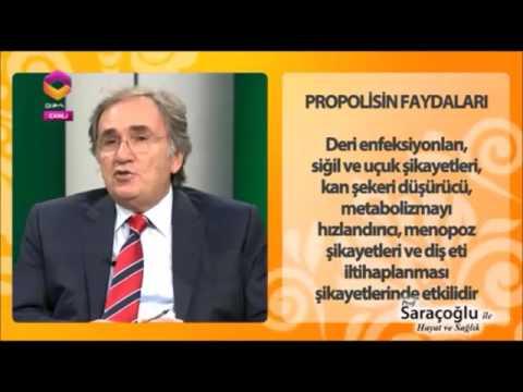 İbrahim Saraçoğlu Propolis Faydaları