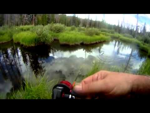 Fishing lower Beaver Ponds with Fish Creek Spinners