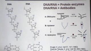 Biosensores para endotoxinas y trabajo de biosensores en metales