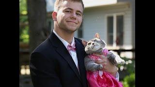 アメリカのダンスパーティで、パートナーに猫を選んだ男子高校生が話題に!