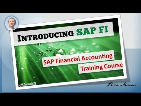 SAP FI CO - Financial Accounting Overview Course - SAP Training ...