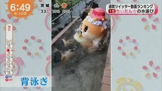 暴走ゆるキャラちぃたん☆の貴重な水遊びシーン