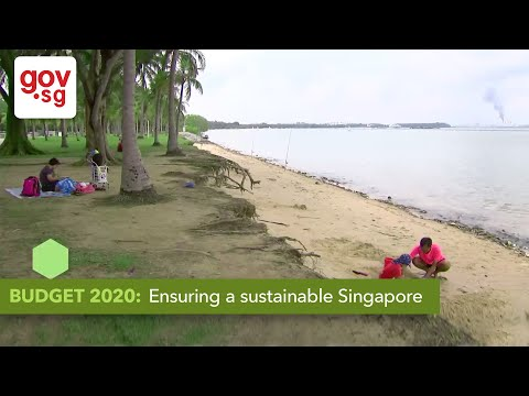 Budget 2020: Ensuring a Sustainable Singapore