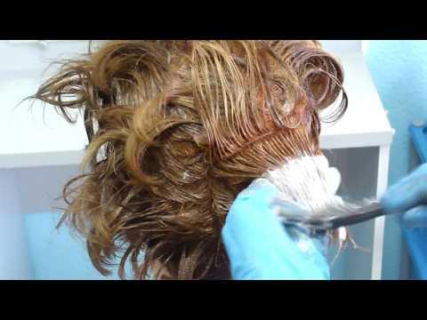 Окрашивание седых волос. Семинар по колористике фирмы Estel. Тема: Седина.