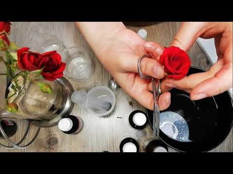 Вечная роза в глицерине | Консервация цветов | Мой опыт