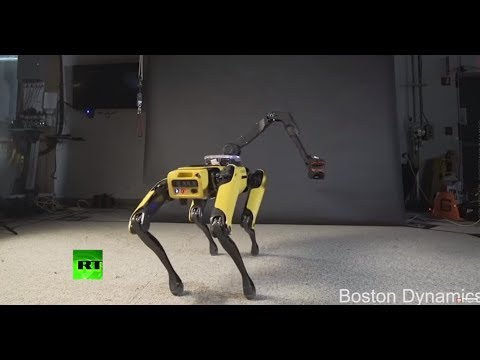 Robo-twerk: Coming soon to hottest club near you