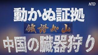中国の臓器狩り:動かぬ証拠(日本語吹き替え版) 鐵證如山 ドキュメンタリー