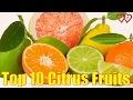 Top 10 Citrus Fruits You Should Definitely Give A Try